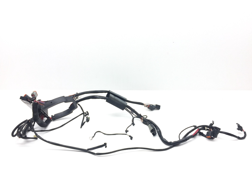 Harley Main Engine Wiring Harness from 2001 Softail